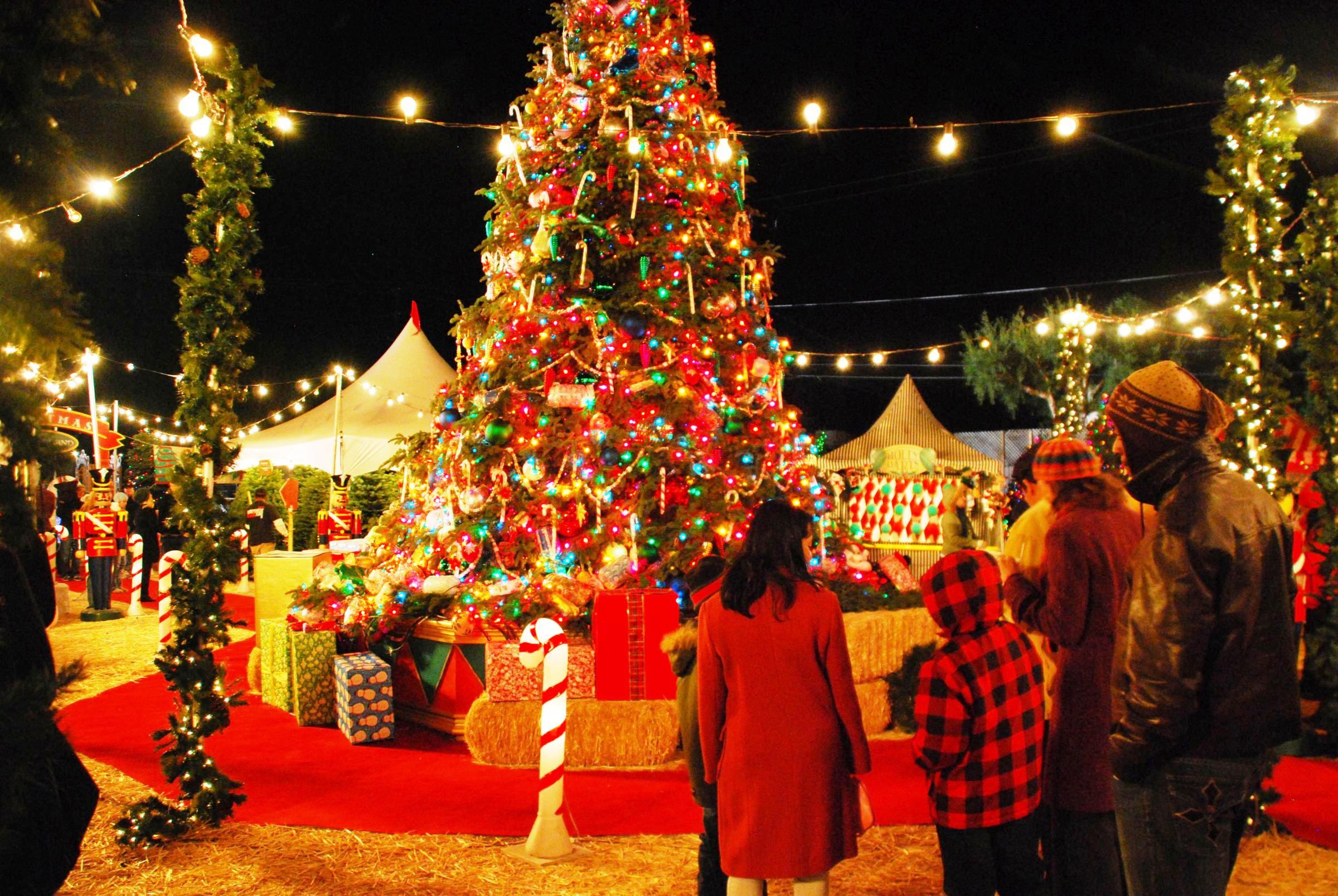 christmas, christmas celebration