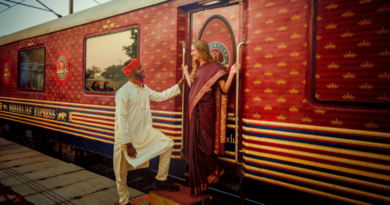 luxury train,train journey in india,incredible india